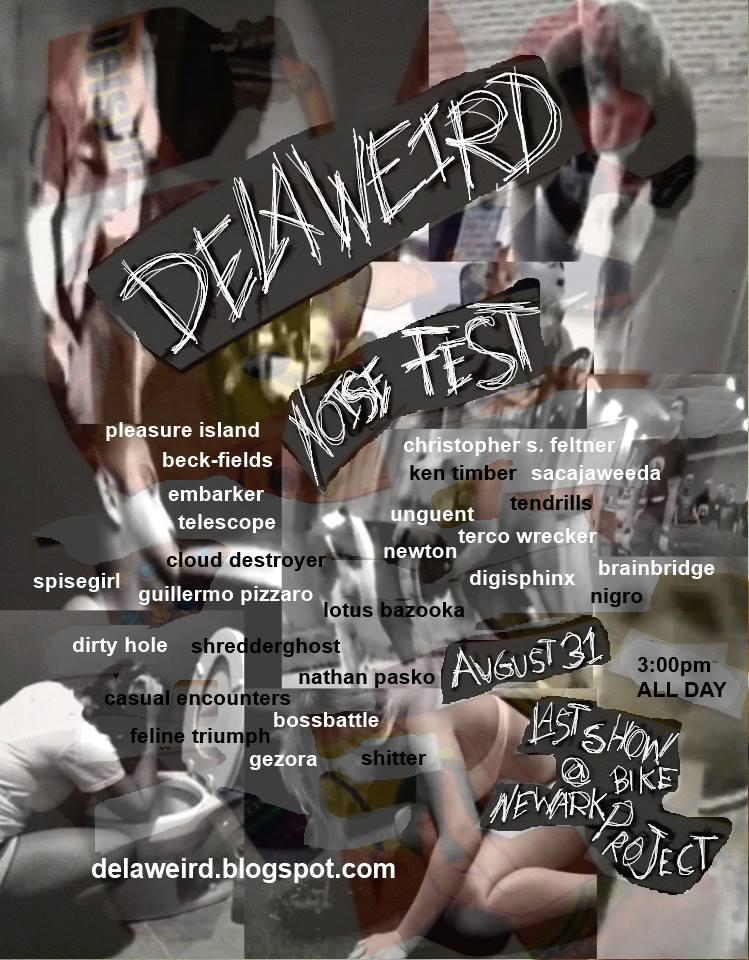 Delaweird Noise Fest 2013